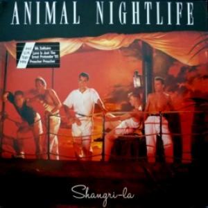 Animal Nightlife - Shangri-La