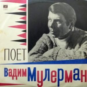 Вадим Мулерман - Поет Вадим Мулерман