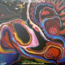 Nurse With Wound / Cyclobe - Angry Eelectric Finger 2 - Paraparaparallelogrammatica