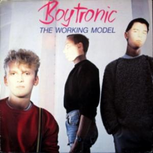 Boytronic - The Working Model