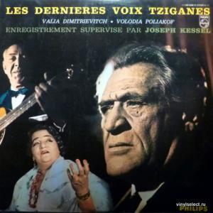 Valia Dimitrievitch (Валя Димитриевич) & Volodia Poliakof (Володя Поляков) - Les Dernieres Voix Tziganes