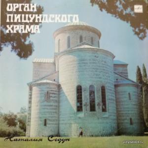 Наталия Седун - Орган Пицундского Храма (J.S.Bach, M.Dupre, O.Messiaen, D.Buxtehude)