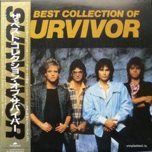 Survivor - The Best Collection Of Survivor