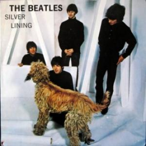 Beatles,The - Silver Lining
