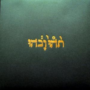 Godspeed You Black Emperor! - Slow Riot For New Zero Kanada E.P.