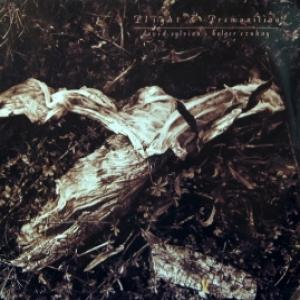 David Sylvian & Holger Czukay - Plight & Premonition