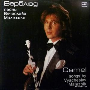 Вячеслав Малежик - Верблюд