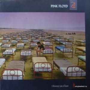 Pink Floyd - A Momentary Lapse Of Reason (White Vinyl)