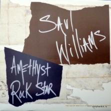 Saul Williams - Amethyst Rock Star