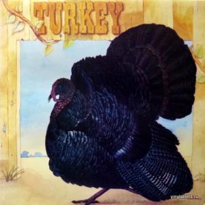 Wild Turkey - Turkey