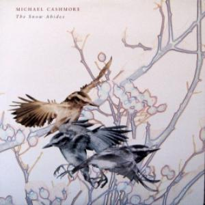 Michael Cashmore - The Snow Abides (feat. Antony And The Johnsons)