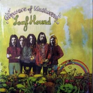 Leaf Hound - Growers Of Mushroom