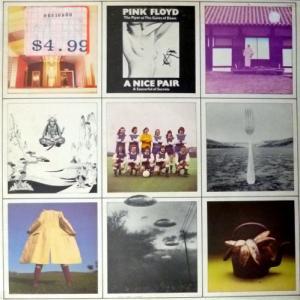Pink Floyd - A Nice Pair